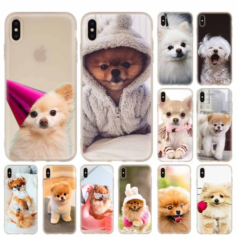 Coque iPhone Chihuahua
